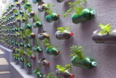 Hogares más ecológicos