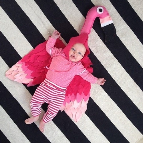 Disfraz de flamenco para bebé